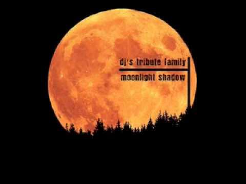 DJ's Tribute Family - Moonlight Shadow (Rudeejay Remix)