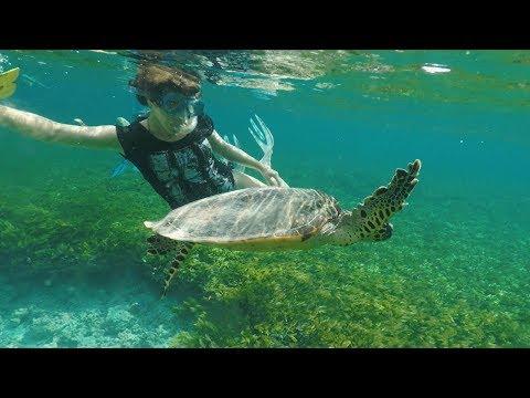 Snorkelling alle Seychelles
