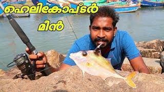 Helecopter Fish | Variety Of Fish Catch And Cook | Kerala Fishing And Cooking | Catch and cook