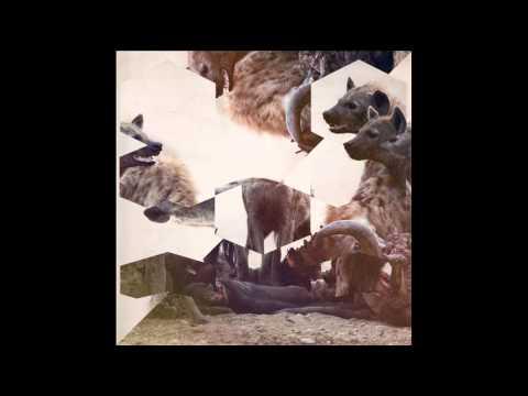 Hyenah - The Wish Dub [Freerange]