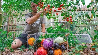 This Method Of Gardening Will Change Your Life, It Did For Me | September Harvest