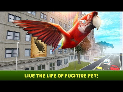 🐦👍City Bird Parrot Simulator 3D - By Wild Animals Life Simulation- iTunes/Android