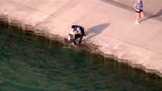 「あっ、犬が湖に落ちた…」→警察官が体を張って救出する(動画)