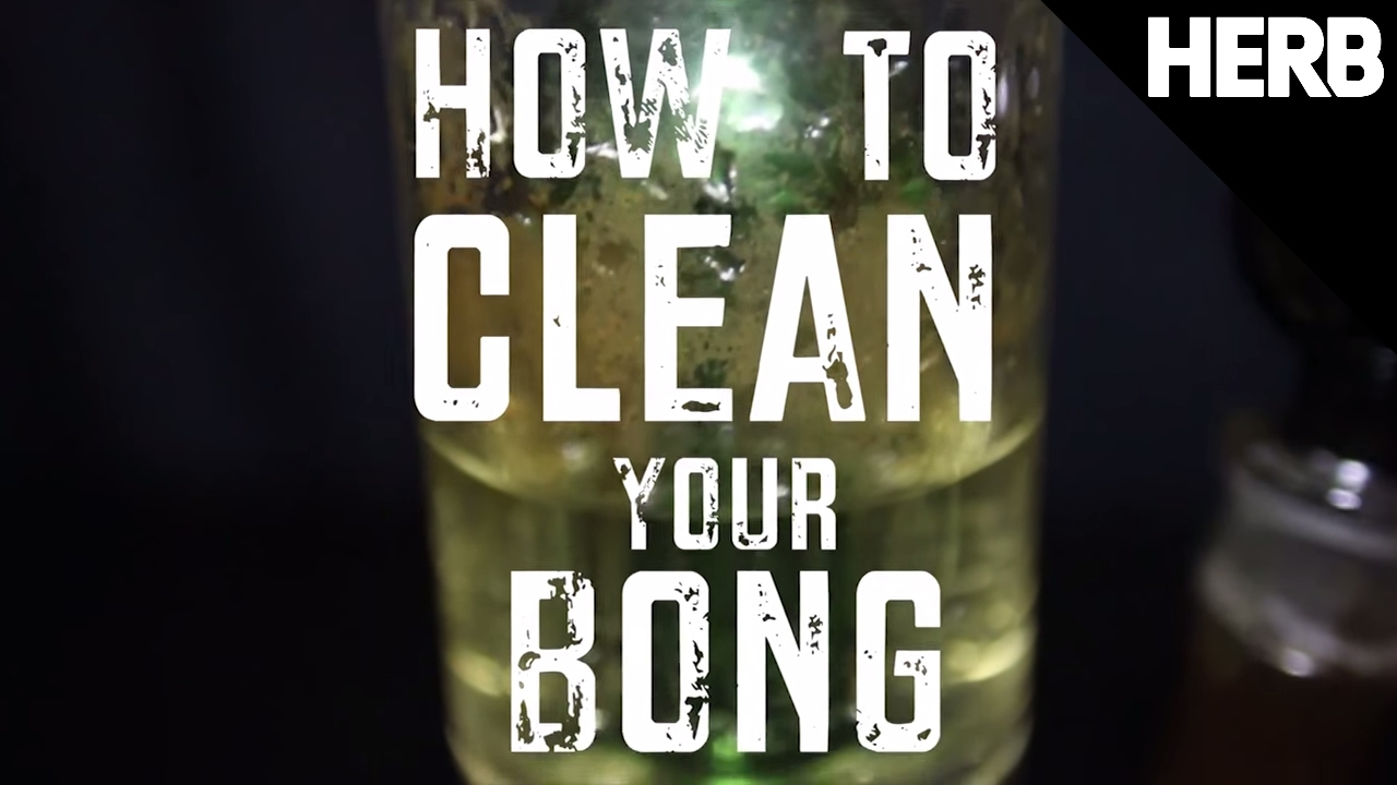 How To Clean A Bong | Herb