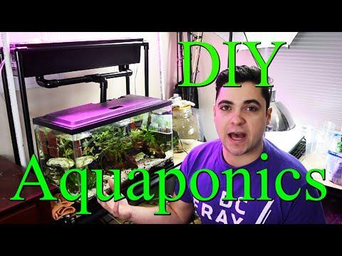 DIY AQUAPONICS System For 10 Gallon Fish Tank - Part 1