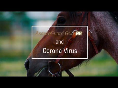 Assure Guard Gold NG And Corona Virus