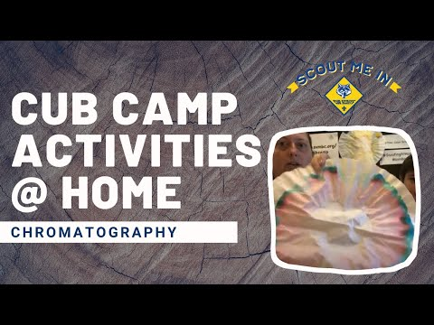 Chromatography - Cub Camp Activities At Home