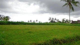 Land for sale in Ubud Bali, fantastic view in Ubud Tampak Siring Bali -- TJUB284