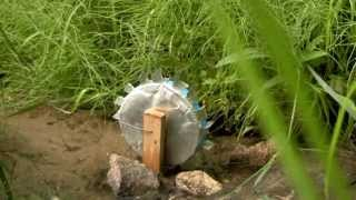 How To Make A Water Wheel Science Project