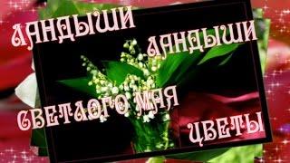 Ландыши ландыши  светлого мая цветы