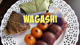 Tasting Wagashi- traditional Japanese sweets - Whatcha Eating? #153