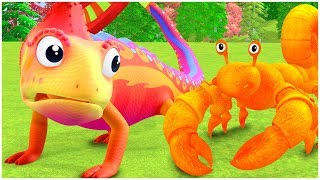 Cartoon for kids | Insects and Bugs | Wildlife for kids | Compilation | Everythings Rosie