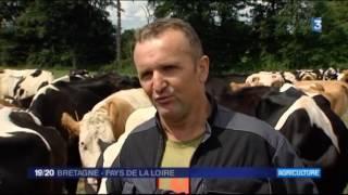 Cancers et pesticides en agriculture - 19 20 Bretagne et Pays de la Loire