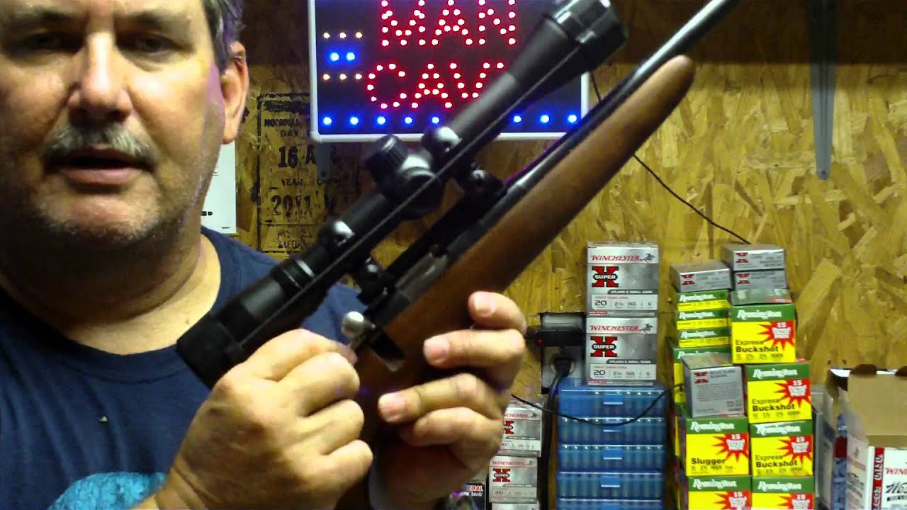 Cricket / Chipmunk rifle update with scope