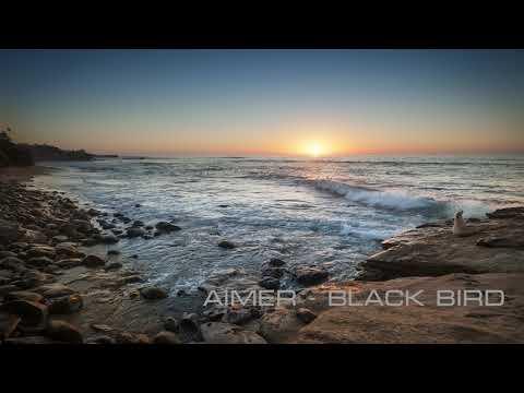 Aimer-Black Bird(8d Version)