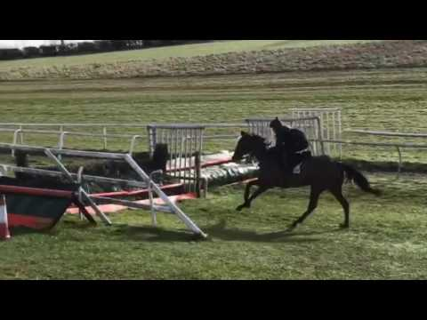 Schooling At Condicote 13th March
