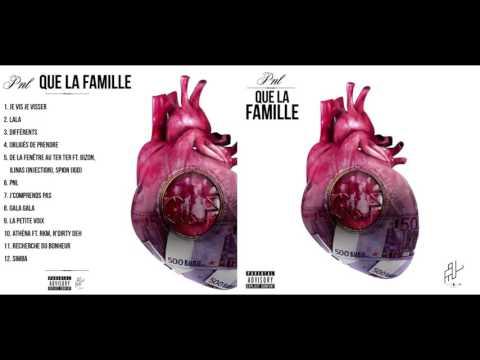 Youtube: PNL- Que la famille [Album Complet]
