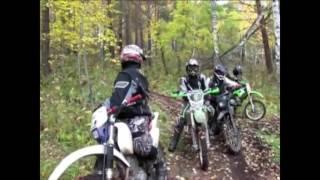 В красноярском заповеднике квадроциклисты разбудили медведей