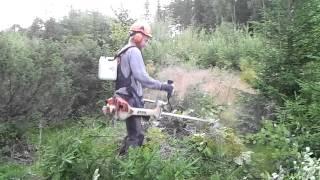 Praca w Szwecji,Rojning ;)''ERIKSSON''