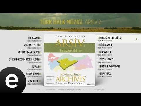 Şu Dağlar Ulu Dağlar (Türk Halk Müziği) Official Audio #şudağlaruludağlar #türkhalkmüziği