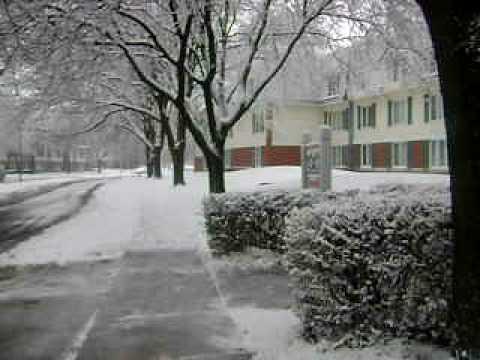 snowfall at schaumburg chicago