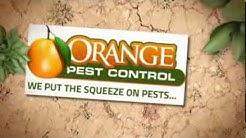 Pest Control Palm Bay FL