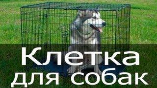 Клетка для собак, купить клетку для собак, складная клетка для собак, клетка для перевозки животных