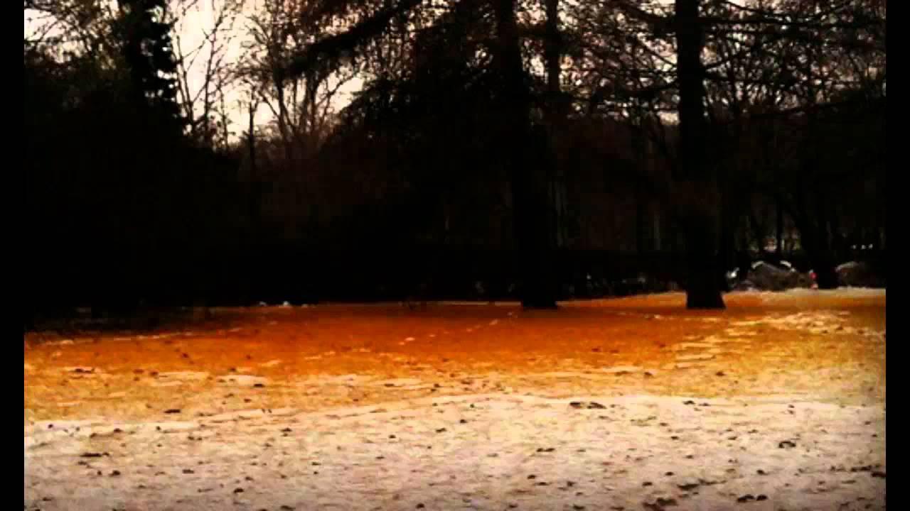 Image result for orange snow