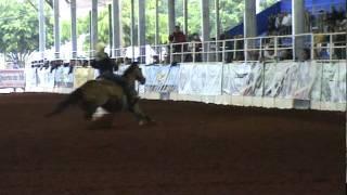 UNO MAS CORONA - Cheyenne Wimberley - Res. Campeã Copa dos Campeões ABQM 2011 - Aberta Sênior