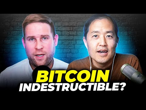 Is Bitcoin Just Starting Out? Invest Or Not?  w/ Dan Held interview (Ep. 250)