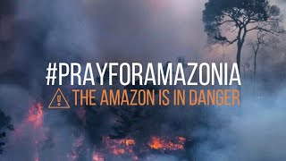 #AmazonRainforest The Amazon Rainforest Is Burning | Mainstream Media Ignores It Completely