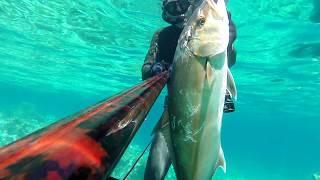 Akya Avı, 12kg, Big Amberjack Spearfishing With Abellan Denton, 2019