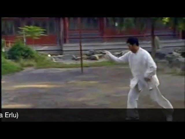 Tian Qiu Xin - Tai Chi style Chen Xinjia Erlu Paochui [ 陈氏太极拳新架 Taijiquan style Chen]