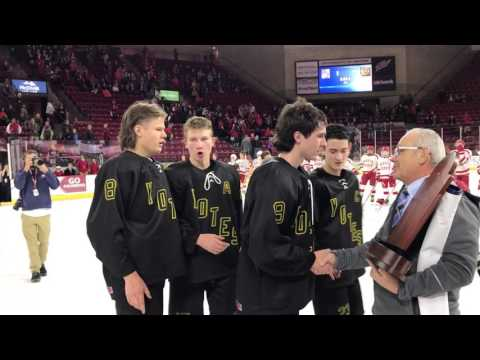 Monarch wins state hockey title