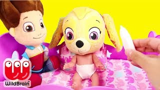 Download Paw Patrol Skye and Chase play Don't Wake Granny Challenge - Ellie Sparkles Toys and Dolls Mp3 and Videos