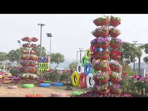 AMC Flower Show 2020 begins in Ahmedabad at Sabarmati River Front