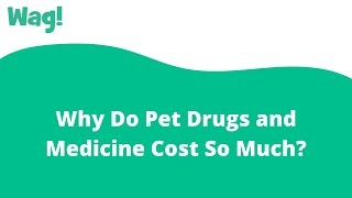 Why Do Pet Drugs and Medicine Cost So Much? | Wag!