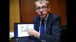 Hans Rosling, presidente do Gapminder Institute