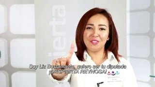 Lizbeth Bustamante Reyes - Diputada Distrito 7 Reynosa, Tamaulipas