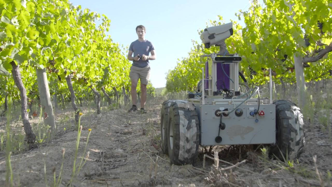 Csir Develops Vineyard Robot