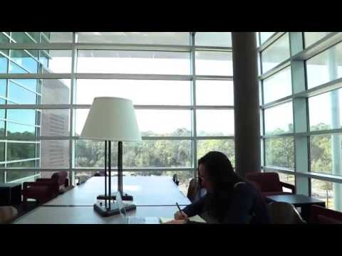 Inside The Nest Su On The Unf Library Part 3 Youtube