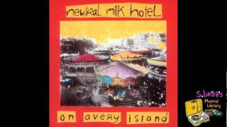 Watch Neutral Milk Hotel A Baby For Pree video