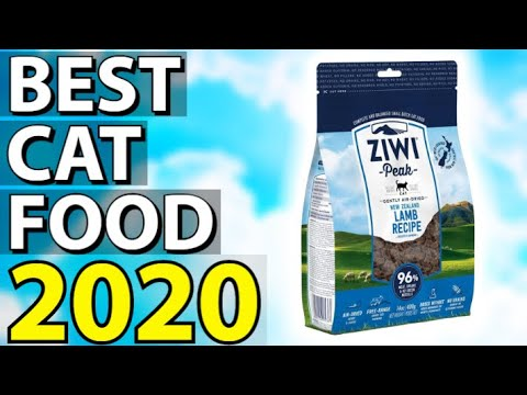 ✅ TOP 5: Best Cat Food 2020