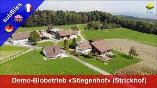 Der neue Bio-Demobetrieb «Stiegenhof» der Landwirtschaftsschule Strickhof, Kanton Zürich