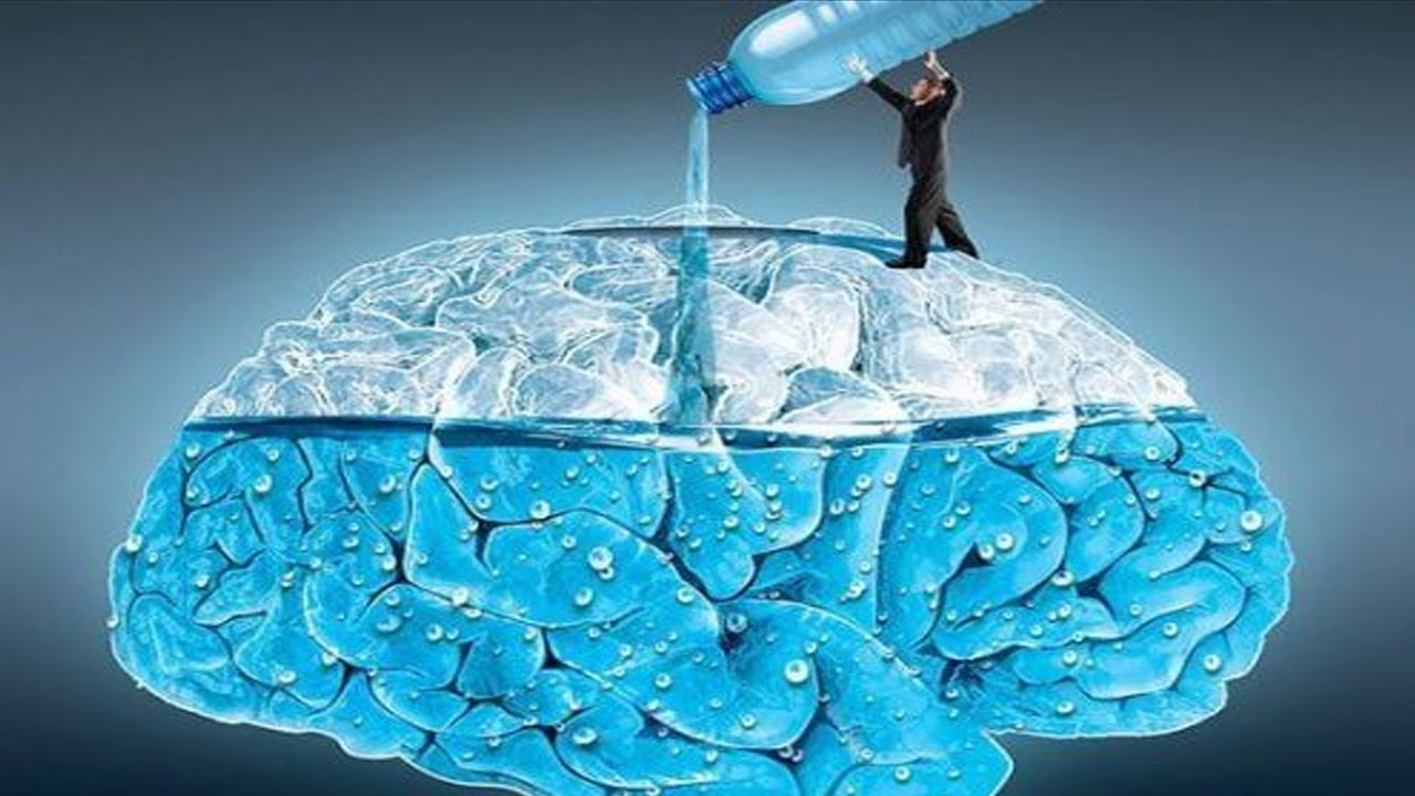 Image result for brain water