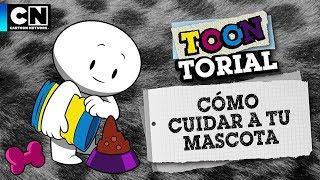 Cómo cuidar a tu mascota | Toontorial | Cartoon Network