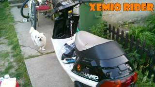Xemio Rider// Yamaha Champ Cx