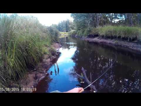 рыбалка река черная зеленогорск