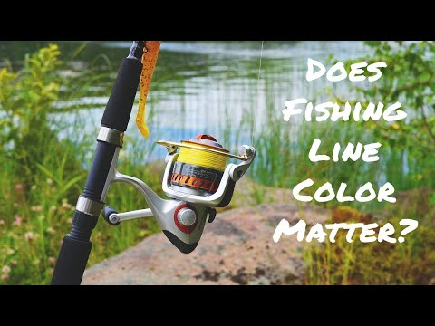 Does Fishing Line Color Matter? Watch This To Find Out Now!