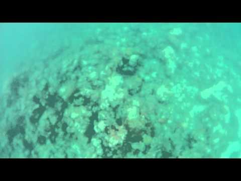 Nassau Underwater Adventure